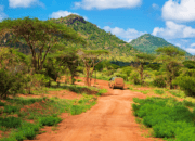 Národný park Tsavo, Keňa, Afrika